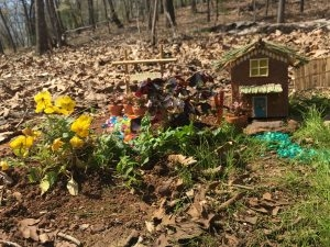 A Tiki Hut fit for a fairy complete with a back yard plant sale with tiny succulents in ittie bittie terra cotta pots.