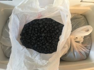 Bags of blueberries in a cooler.